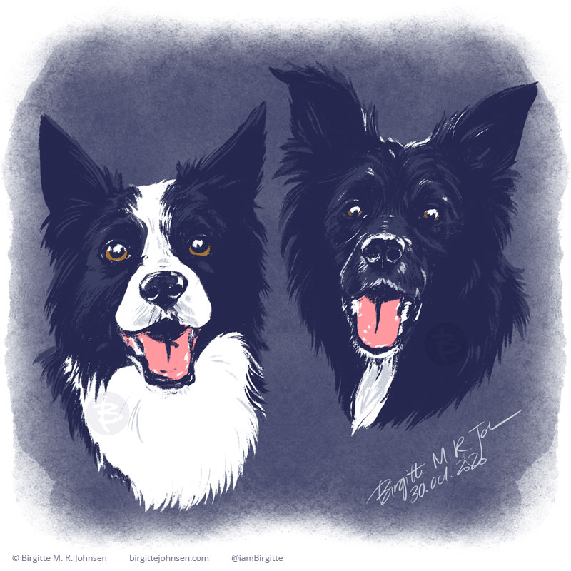 Portrait of Alma and Lissie, who are both black and white border collies, though one with more white than the other. The image was painted using only six colours, including white.