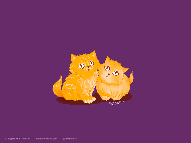 Two orange persian kittens.