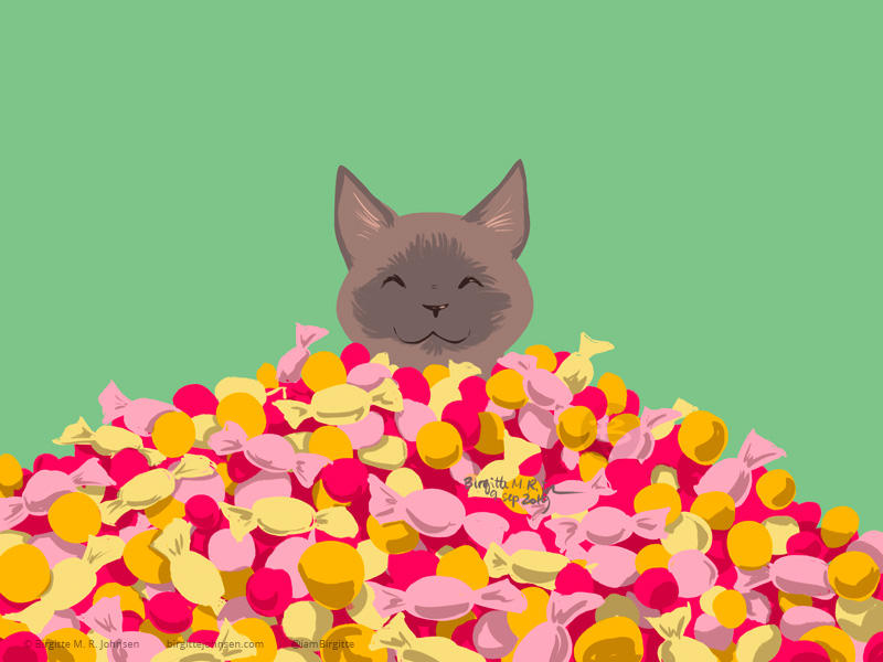 A burmese cat sitting amongst a small mountain of sweets, human sweets.