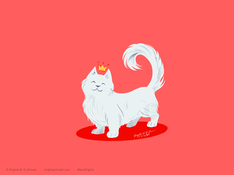 A white munchkin cat (a cat with very short legs, like a cat version of a dachshund or corgi) with a tiny crown.