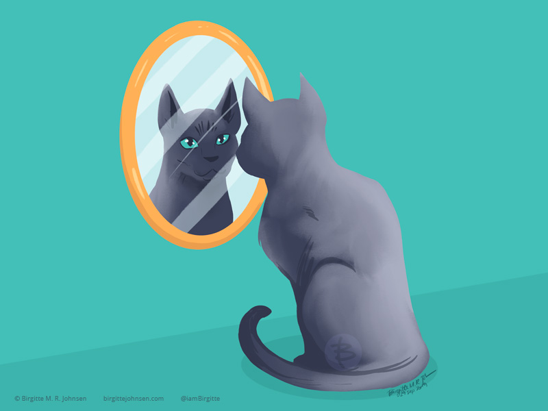 A korat cat with its back turned to us, yet it is looking at us through the mirror.