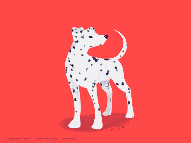 A spotted Dalmatian on a bright red background.
