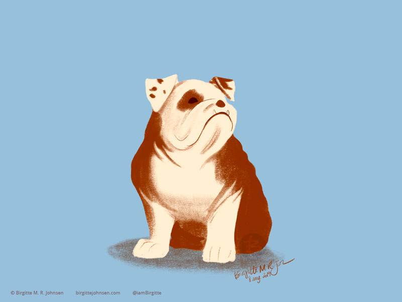 A squat brown and cream Bulldog painted on a light blue background.
