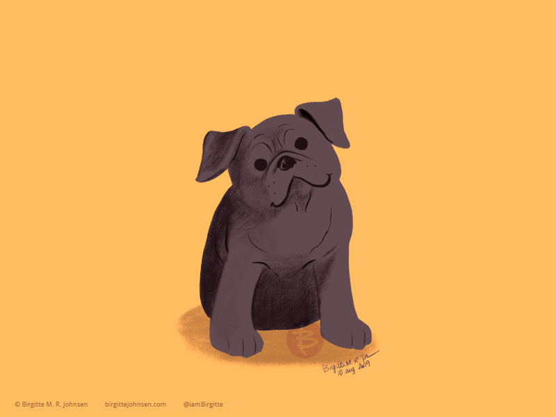 A black little pug on a yellow background.