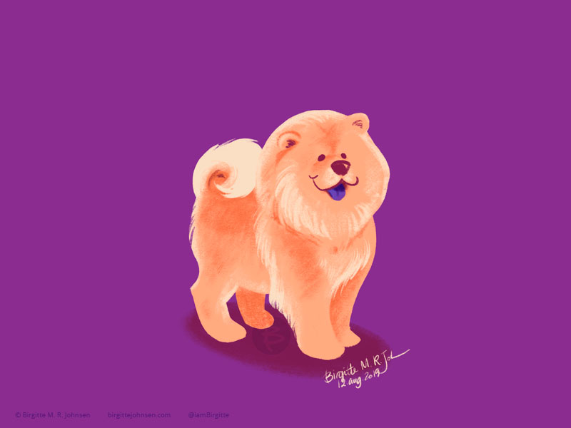 A happy tan Chow Chow showing off its blue tongue painted on a warm purple background.