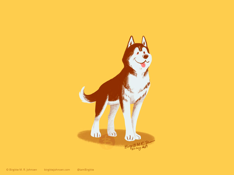 A handsome brown and white Siberian Husky painted on a yellow background.