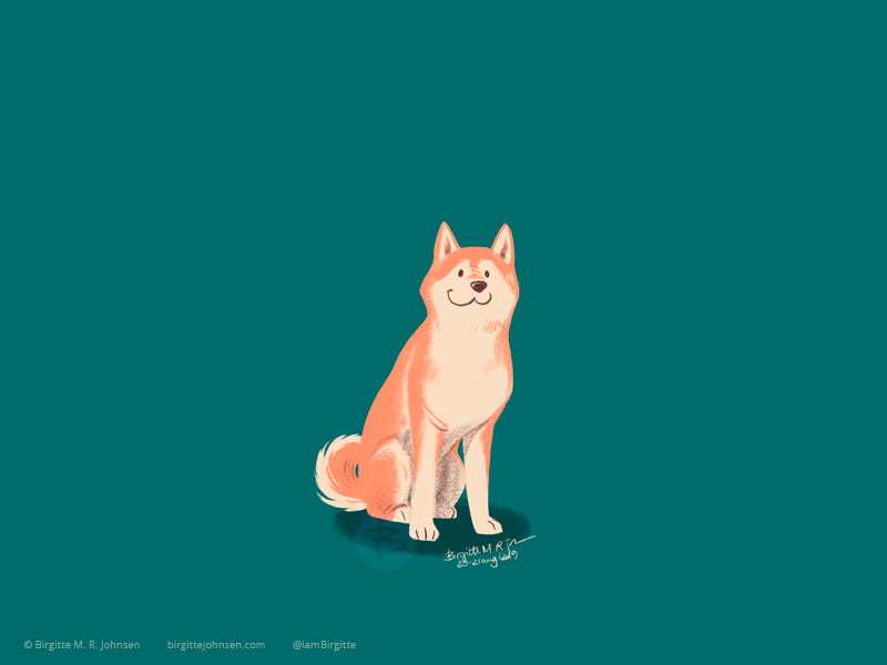 A cream and red Shiba Inu sits on a pine green background.