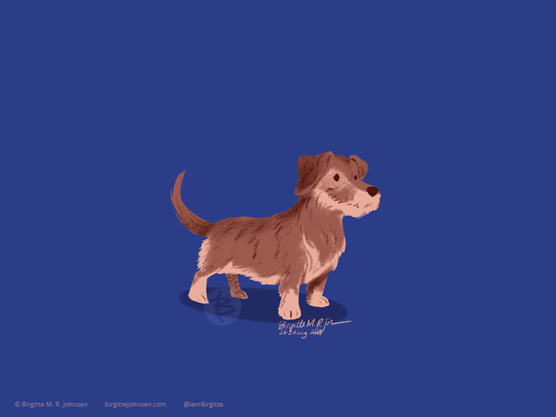 A wire-haired Dachshund in different browns painted on a dark blue background.