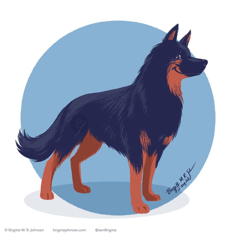 The Bohemian Sheepdog, looks like a fluffy and soft German shepherd, but is a breed of its own. This happy Bohemian Shepherd is painted digitally in front of a blue circular background.