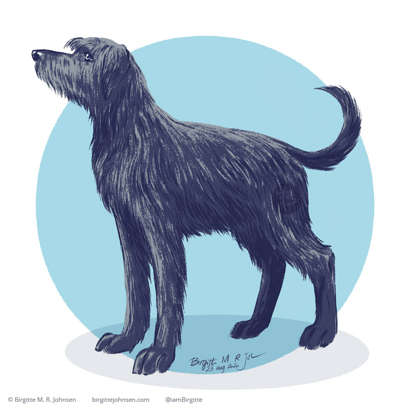 A digital painting of an Irish wolfhound posing in front of a blue circular background.