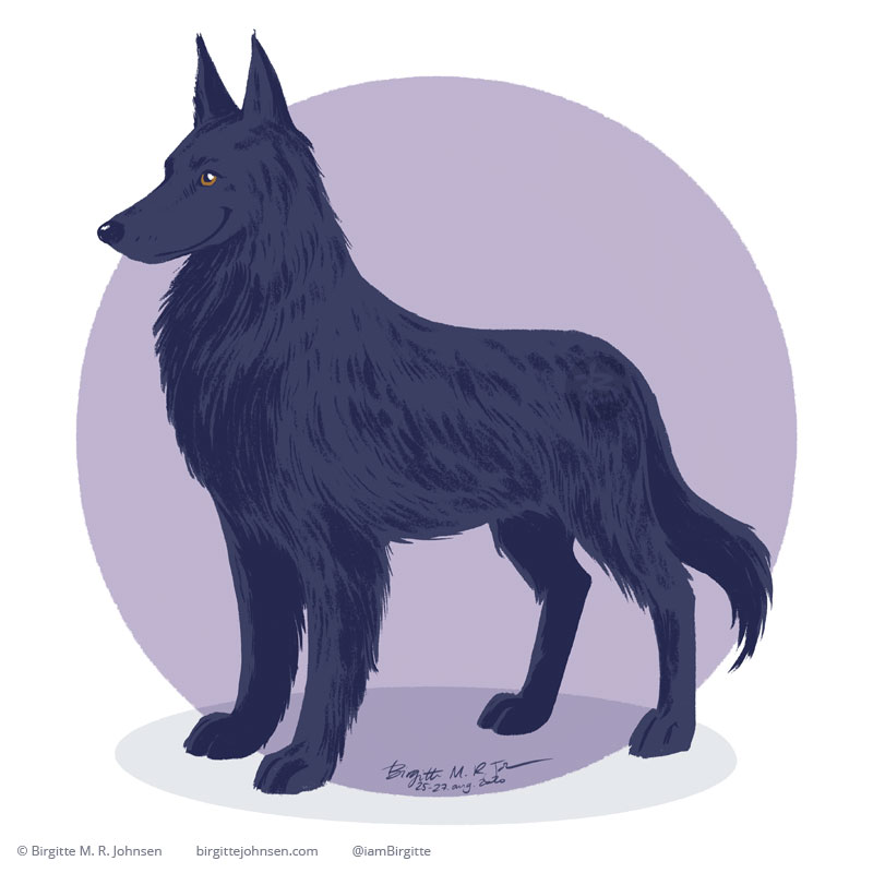 A black regal dog with slightly long fur, with a similar stature of a german shepherd, painted digitally in front of a lilac circular background.