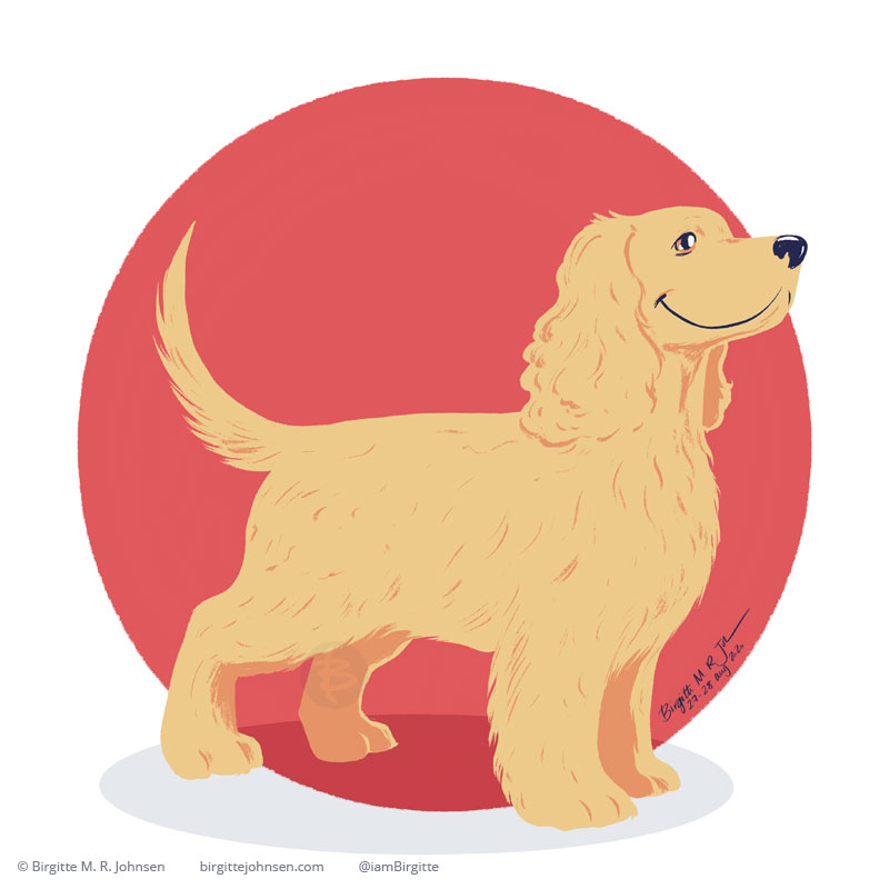 A happy golden cocker spaniel painted in front of a light red background.