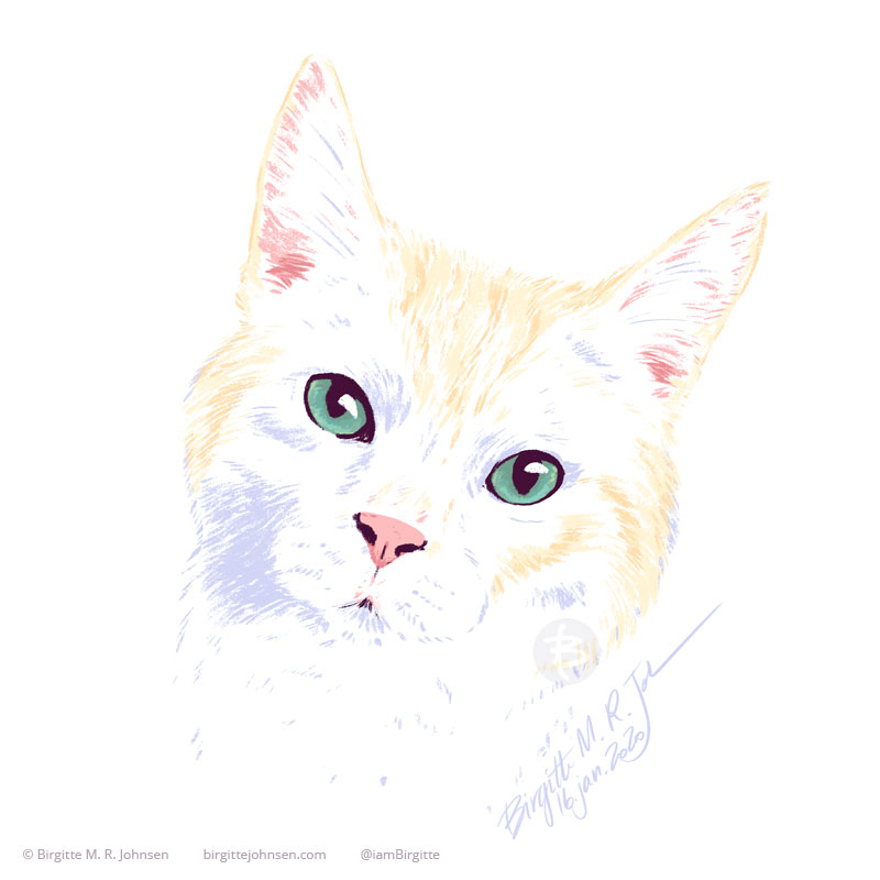A pet portrait Koimo, the Munchkin cat, who is a cream colour with slight tabby like yellow markings. He is looking towards the viewer with bluish-green eyes. This image was painted using only ten colours, including white.