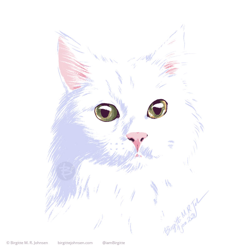 A portrait of Kuro, the white Norwegian Forest cat, with beautiful yellow and green eyes. The image only only eight colours, including white, and was painted digitally.