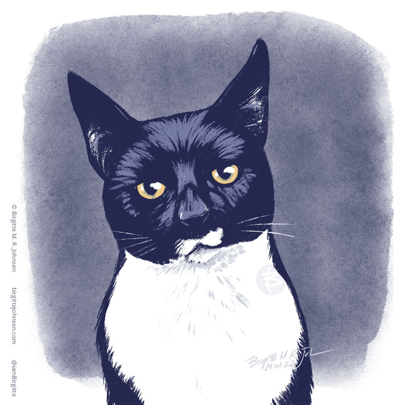 Digital portrait of Lucy Fur, the tuxedo cat painted digitally using only seven colours.