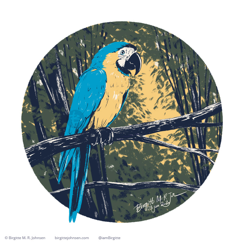 A blue and gold macaw sitting on a branch in the rain forest, painted digitally with a limited colour palette of cream, green, dark blue, blue and yellow.