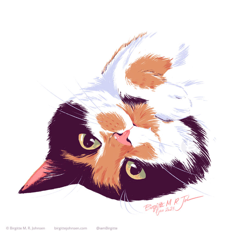 A digital portrait of Nemesis the calico cat. She lies upside down, with one ear hidden by her head, and a paw lies underneath her chin. She has black markings on her head, and covering her eyes, with orange tabby markings on her nose in spots on her muzzle and her paw. The image was painted digitally using only ten colours, including white.