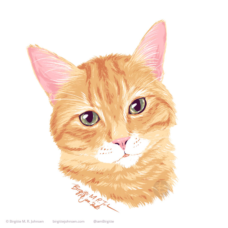The digital portrait of Nyanko the orange tabby with a white muzzle. The image was painted using only nine colours, including white.
