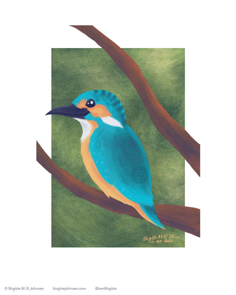 A happy kingfisher.