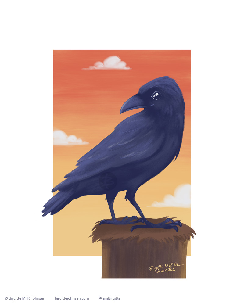 A pleased raven sitting on top of a telephone pole.