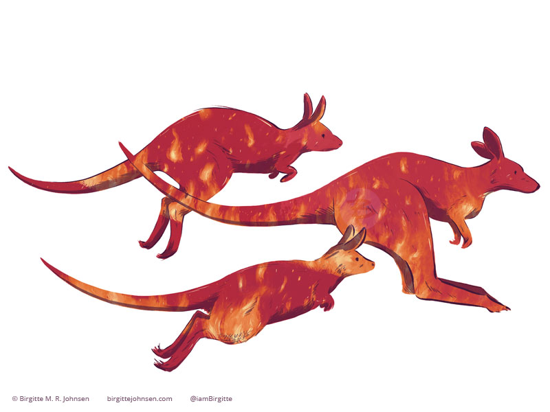 Silouettes of kangaroos and wallabies filled with a scene fire.