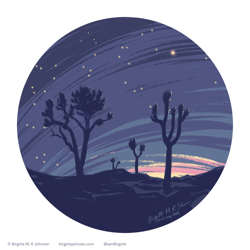 Digital painting of Joshua Tree National Park at night showing bright stars in the sky.