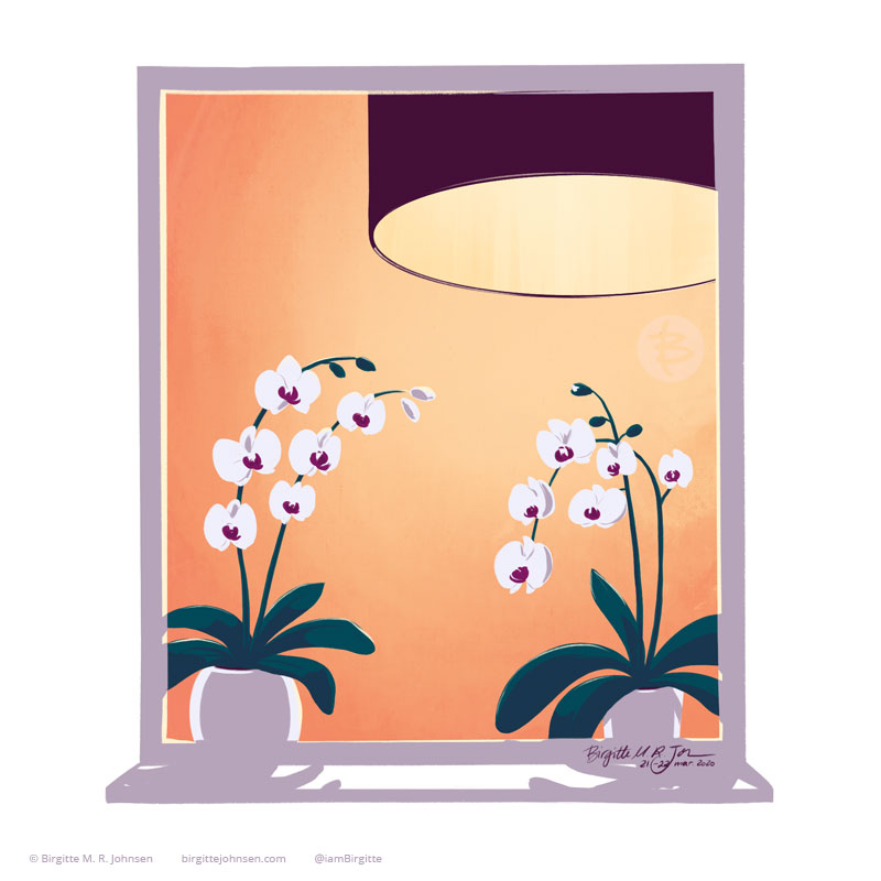 A window featuring a big lamp and orchids.